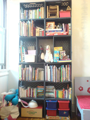 Daddytypes: crate bookcase