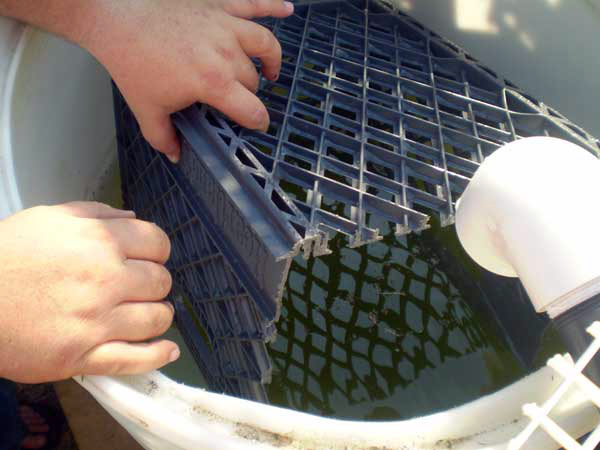 Milkcrate digest diy for Build your own koi pond filter