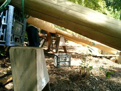 Crate construction in the woods