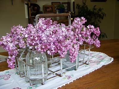 Flowers in a metal milkcrate