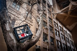 crate-in-tree